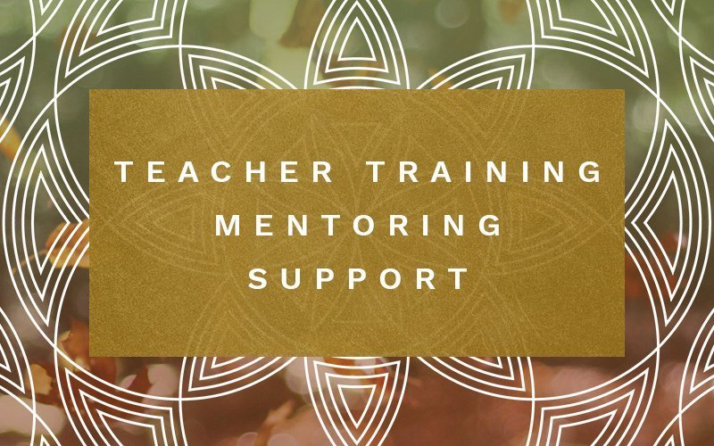 Yael Flusberg | Yoga for Resiliency | teacher training, mentoring support | Washington DC